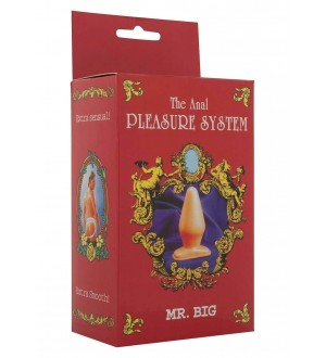 PLUG ANALE MR. BIG ANAL PLEASURE SYSTEM BLACK